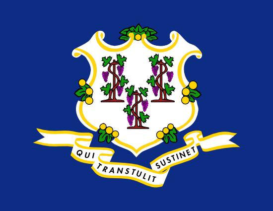 Connecticut Flag Icon