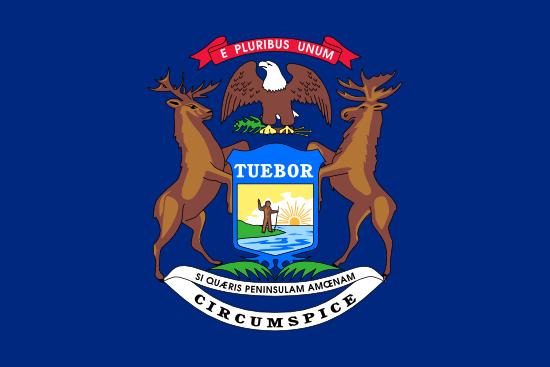 Michigan Flag Icon