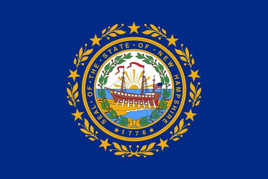 New Hampshire Flag Icon