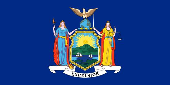 New York Flag Icon