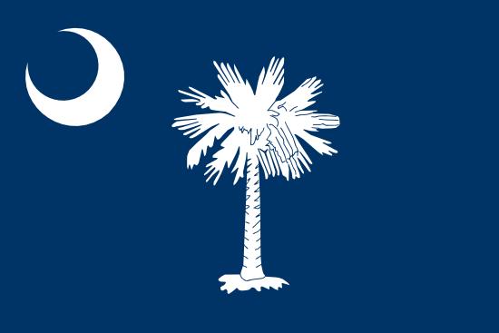 South Carolina Flag Icon