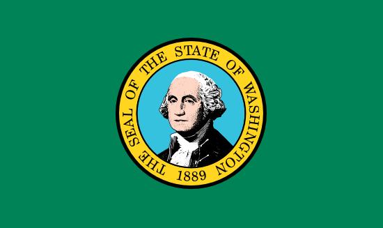 Washington Flag Icon