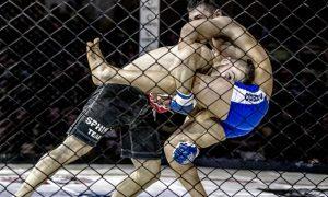 Daily fantasy MMA