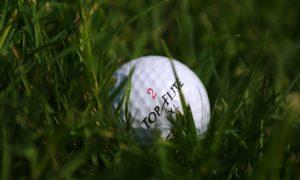Golf Number 2 DFS