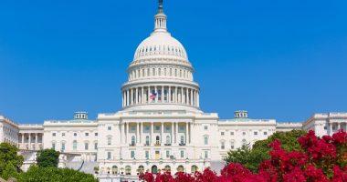 Congress DFS May