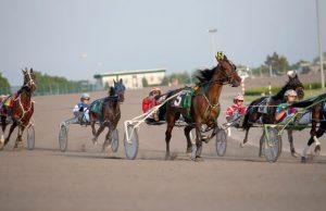 NY sports betting harness racing