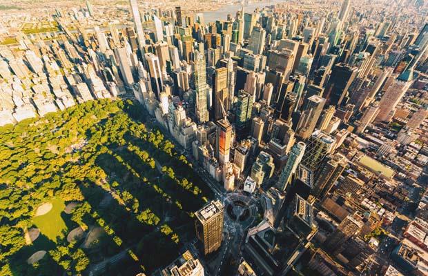 NY DFS revenue