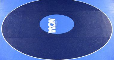 NCAA daily fantasy sports