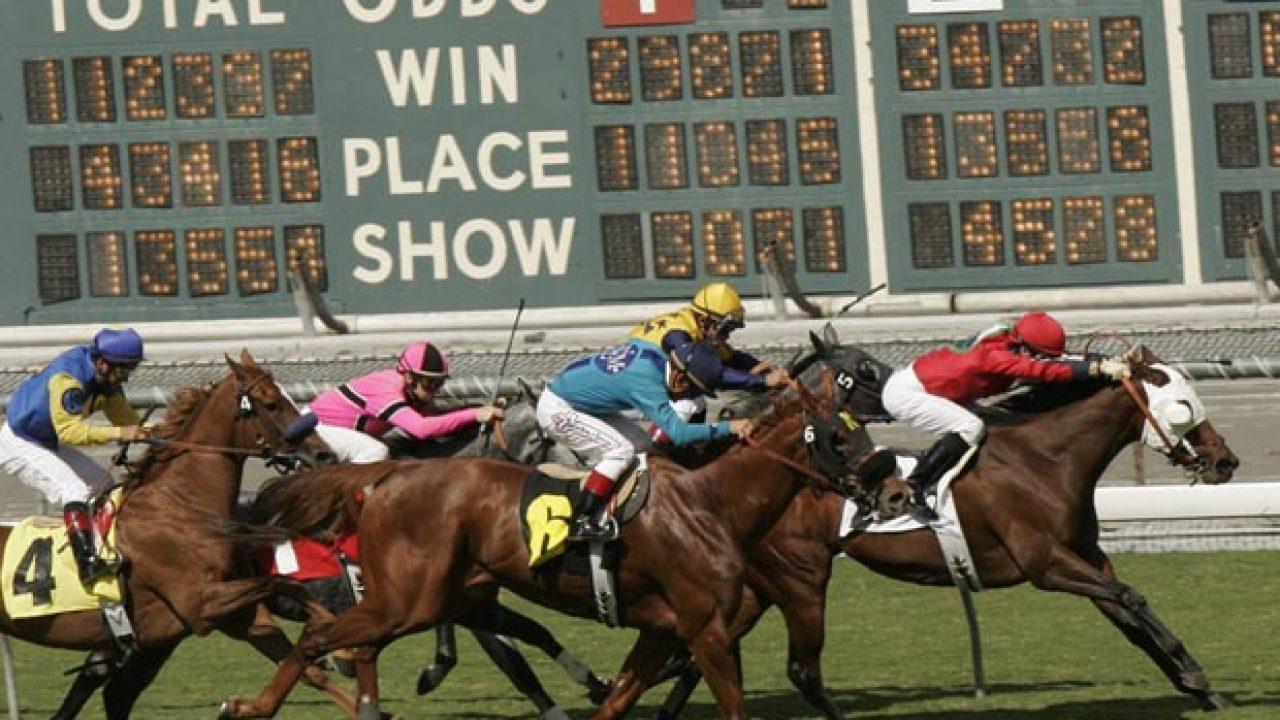 Fantasy horse racing betting terms vegas superbowl betting